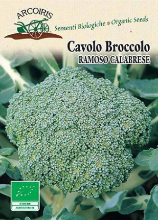 Cabbage Broccolo Calabrese - Organic Seeds