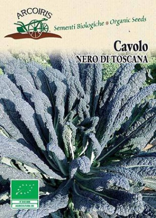 Cabbage Nero Di Toscana - Arcoiris And Biodynamic Organic Seeds