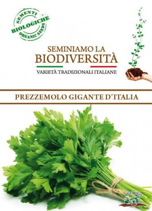 Parsley Gigante D'Italia - Organic Seeds