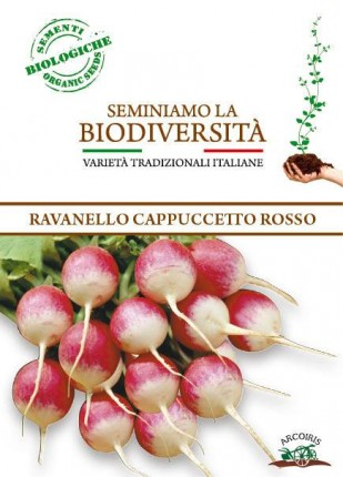 Radish Cappuccetto Rosso - Organic Seeds