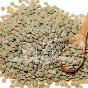 Lentil multicolored - 25 Kg - Arcoiris organic and biodynamic seeds